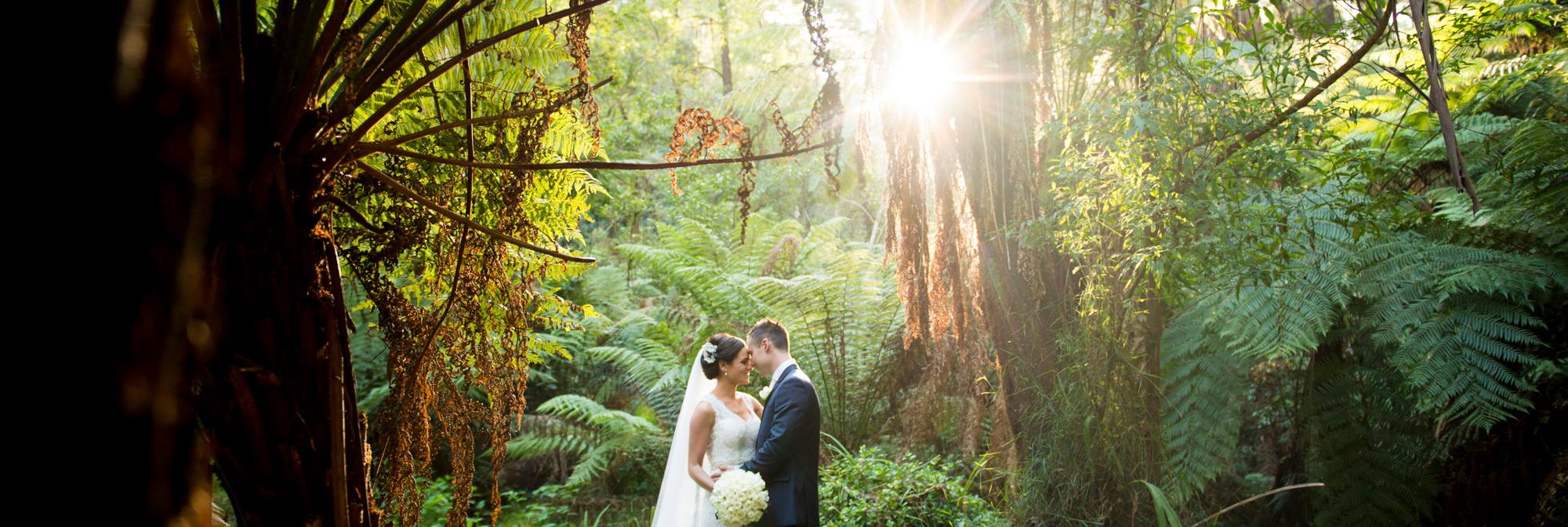 Lyrebird Falls Couple Forest Sunlight
